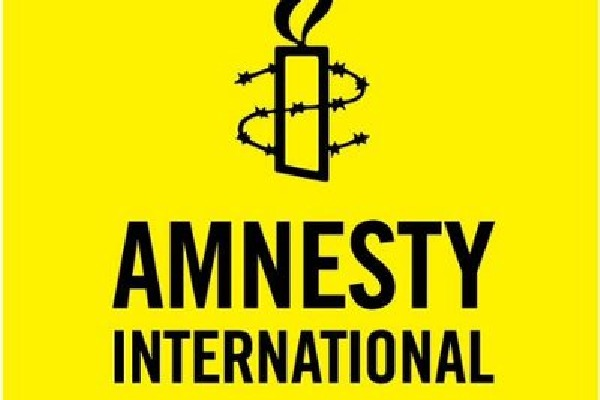 amnesty internations halts its activities in india
