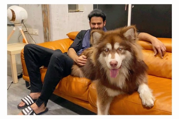 Charmme posts Prabhas latest pic goes viral