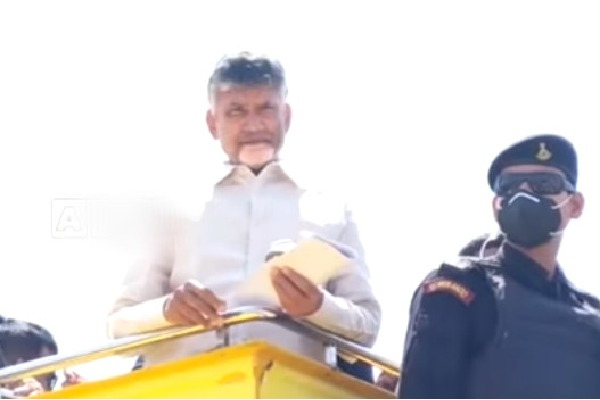 TDP cadre wants Jr NTR in election campaign