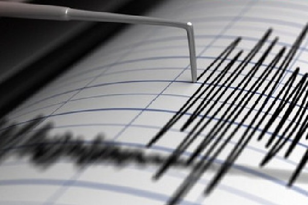 Huge earthquake hits north island of New Zealand