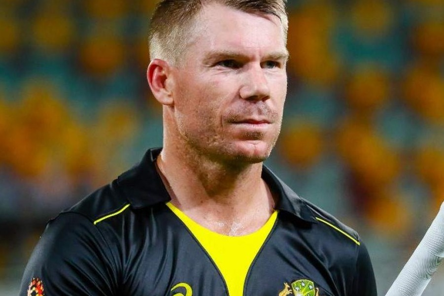 david warner ruled out from t20 series