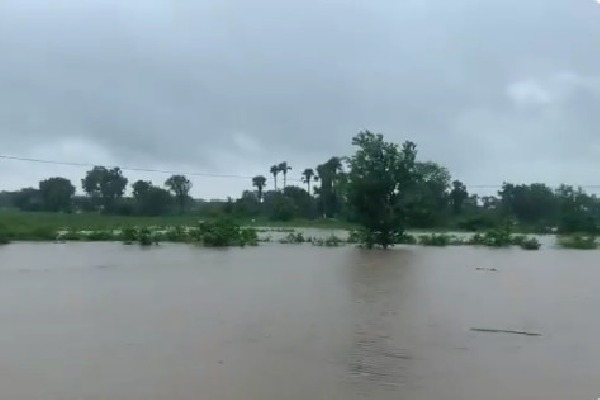 IMD issues heavy to heavy rain alert for five districts in AP