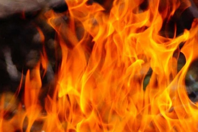 Ten Babies Killed In Fire At Maharashtras Bhandara govt Hospital