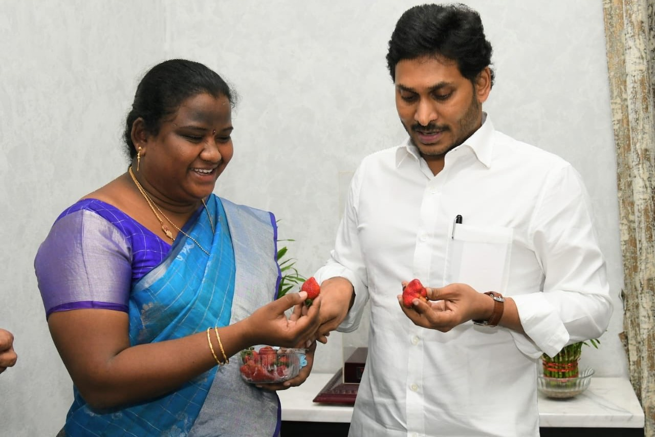 Araku MP Goddeti Madhavi presents Strawberries to CM Jagan