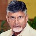 Jagan govt is destroying AP says Chandrababu