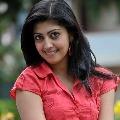 Praneetha to be part of Ravitejas movie