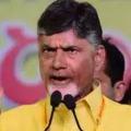 YSRCP is playing cheap politics says Chandrababu