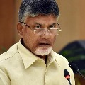 chandrababu writer letter to sec