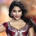 Pooja Hegde latest Hindi film Cirkus