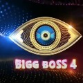 Bigg Boss Season 4 TRP Rating Very Low