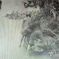Real Police Chage Video Shared by Chennai CP Goes Viral