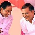 Harish Rao praises KCR on his birthday