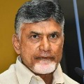 Chandrababu condemns police action on dalit farmer
