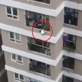 Delivery Driver Catches Toddler Who Fell From 12th Storey