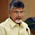 chandrababu express condolence over MPs son demise