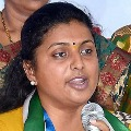 Few YSRCP leaders are backstabbing the party says Roja