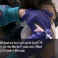 Pfizer Covid Vaccine Starts Testing in Young Children