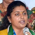 YSRCP leaders perfoms Homam for fast recovery of Roja