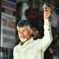 Police questions Chandrababus security on stone pelting