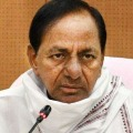 Telangana is going ahead to provide food grains confidence to entire inda