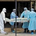 AP corona death toll crosses three thousand mark