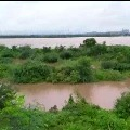 River Godavari flows Over Danger level