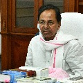 Telangana employs disappointed with PRC fitment proposal
