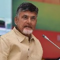 Chandrababu video conference with party leaders