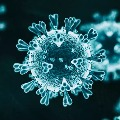 AP Corona Virus spreading statistics