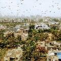 Locusts moves towards national capital region