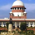 UP Cant Cut Trees for Lord Krishna ordered Supreme Court