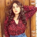 Rape case filed against actress Shehnaz Gill father