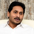 Jagan announces 10 lakhs exgratia to Divyas family