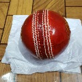 BCCI asks SG Company to review ball quality after players complaints