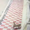 Leopard spotted at museum in Tirumala shrine