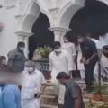 Honeybees attacks on Chiranjeevi and Ram Charan