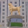 Goleden statue for rare Alabai breed dog in Turkmenistan