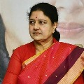 Sasikala to take decision on Chennai going according to astrologers suggestion