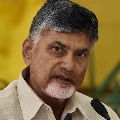 Jagan achieved nothing with Delhi tour says Chandrababu
