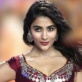 Pooja Hegde in a bilingual movie