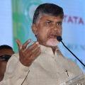 Chandrababu alleges AP government gifted Vijayasai Reddy on his birthday