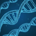 rockefeller university says changes in genes and antibodies are the main cause in covid deaths