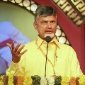 Chandrababu releases a video on YSRCP one year ruling
