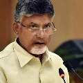 chandrababu slams ycp