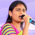 Sharmila reacts on a media story and told that was not true