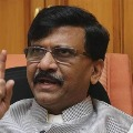 Shiv Sena and Congress have differences says Sanjay Raut