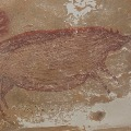 Oldest wall painting Indonesian cave found by researchers