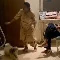 Actor Nagababu Posted Video on His Pet Dog Goes Viral