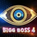List of Bigg Boss Telugu 4 Contestents