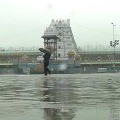 Heavy Rain in Tirumala